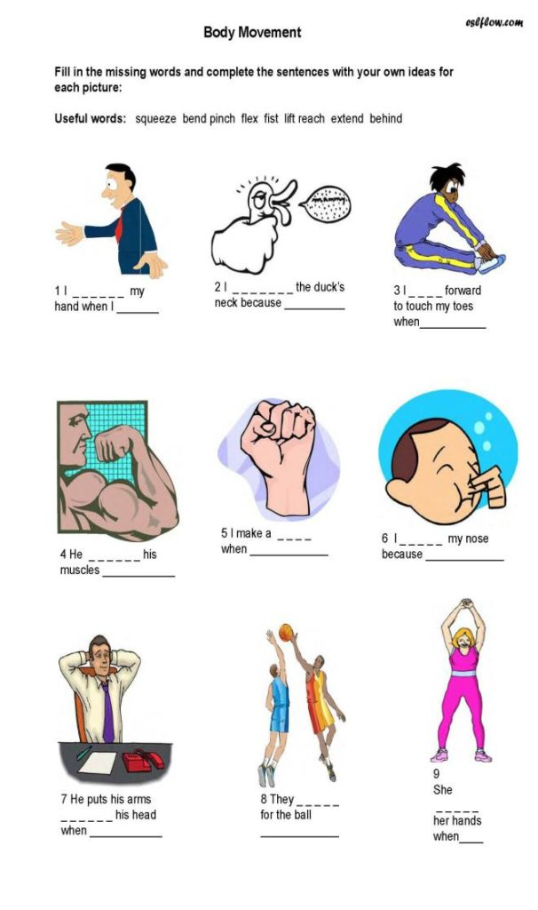 Body-movement---exercise-vocabulary---expressions