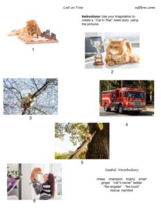 Cat in tree news story worksheet